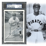 Amazing Roberto Clemente Signed Real Photo Postcard Dated July 1955 PSA/DNA