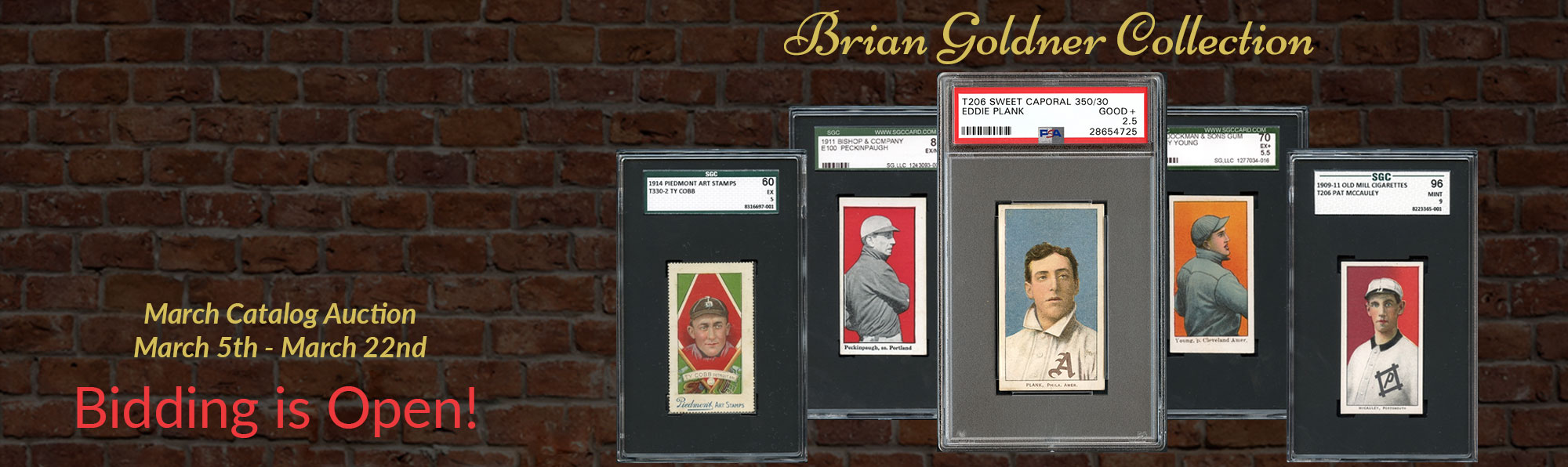 The Brian Goldner Collection